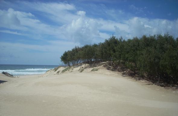 The sandy shore of South Stradbroke Island