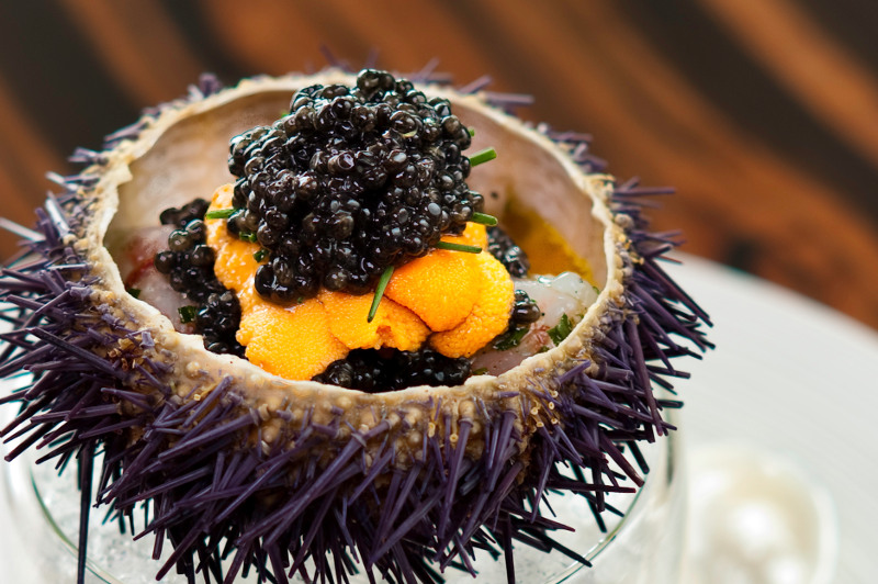 Shrimp with sea urchin and caviar