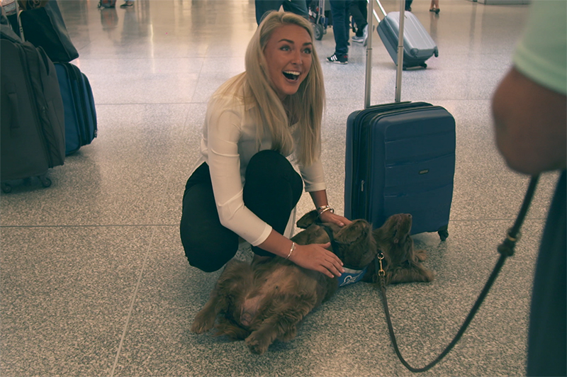 A woman pats a dog from the Wag Brigade at SFO.