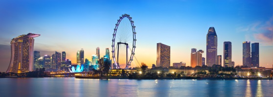 Singapore Tours: City Views