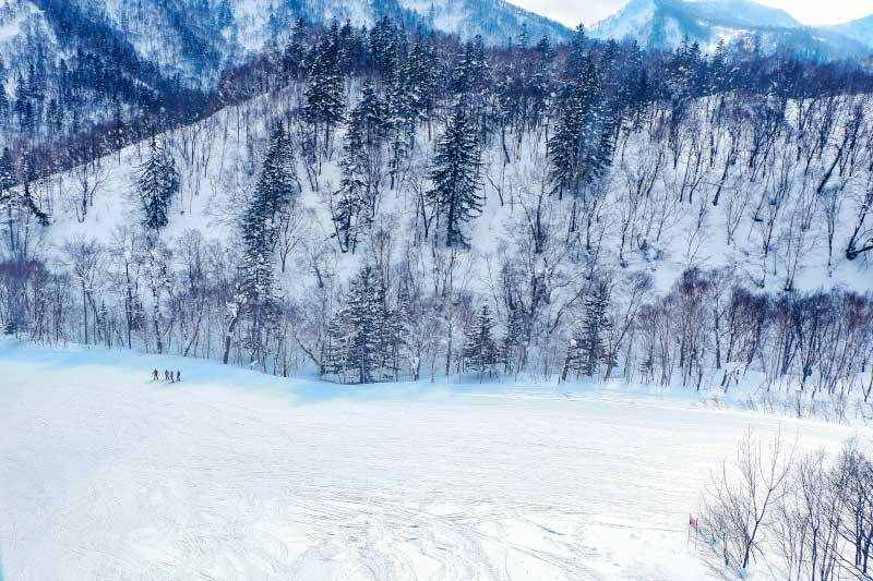 Carve up the slopes with a snowy mountain backdrop at Sapporo.
