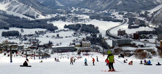 Skiing Japan: Echigo Yuzawa Field