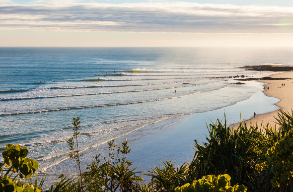 An elevated view of the beach and waves at Snapper Rocks