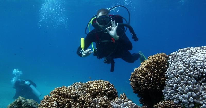 scuba diving million dollar point vanuatu