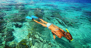Snorkel the Turquoise Waters