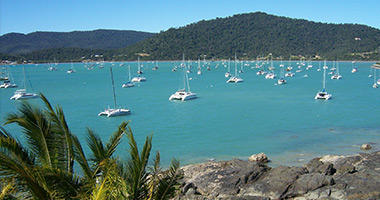 Nearby Palm Cove