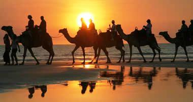 Camel riding in Broome