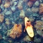 Hawaii Big Island surfer