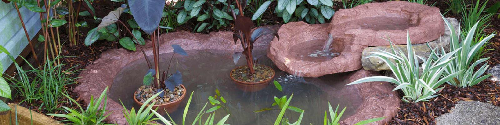 A garden pond.