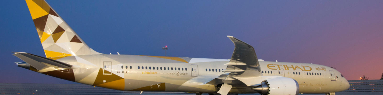 An etihad plan sitting on the runway at dusk.