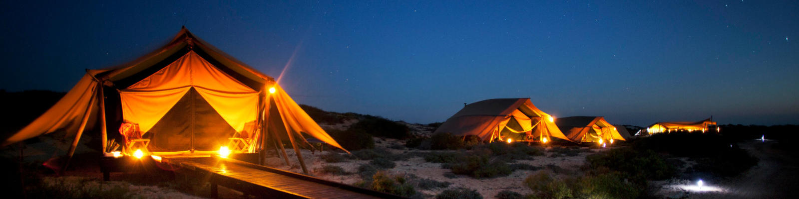 Luxury tents lit up under the starry night sky