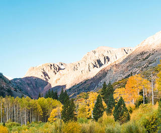 Fall foliage in Lundy Canyon, Mammoth Lakes