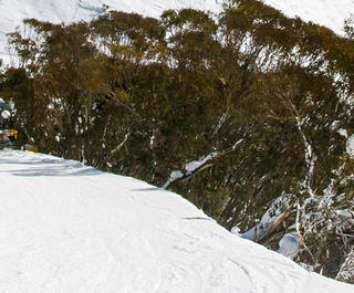 Skiers on Mount Hotham, Victoria