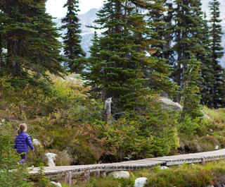 Family walking adventure in Whistler, Canada