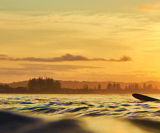 Silhouetted surfers in Byron Bay, Australia