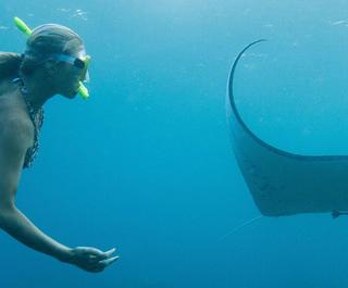 woman swimming with manta ray