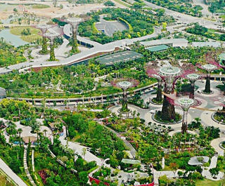 singapore gardens by the bay from above