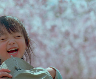 A Japanese girl laughs beneath the cherry blossoms.