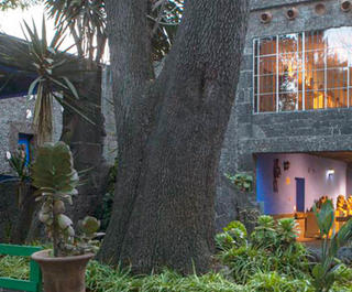 The blue wall and lush gardens of the Blue House Frida Kahlo Museum in Mexico City.