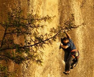 rock climber featured in movie