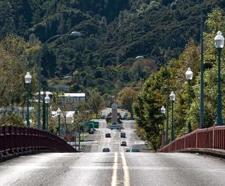The road into Te Aroha.