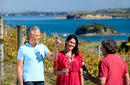 Wine at Cable Bay   © Auckland Tourism, Events and Economic Development Ltd.