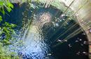 "Ik-kil ""Sacred Blue"" Cenote   by Flight Centre's Tiffany Apatu"