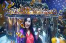 Clown Fish, Two Oceans Aquarium