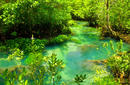 Krabi Crystal Stream