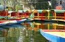 Floating Gardens, Xochimilco