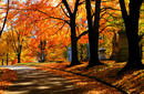 Nashville in autumn