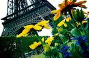 The Eiffel Tower | by Flight Centre's Richard Dannhauser
