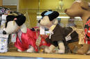 Cute Dog Costumes, Asakusa | by Flight Centre's Katrina Imbruglia