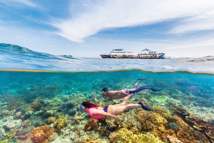 snorkellers on reef with pontoon behind queensland