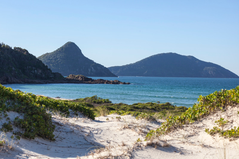 Plant-covered dunes reach down to the sea with forested hills in the background at Port Stephens, New South Wales.