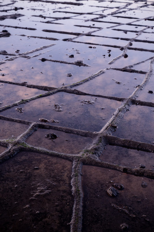 tessellated pavement tasmania sky reflection