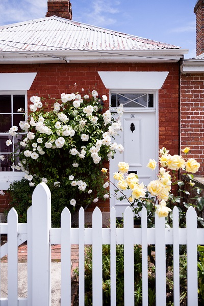 roses outfront of brick house in hobart