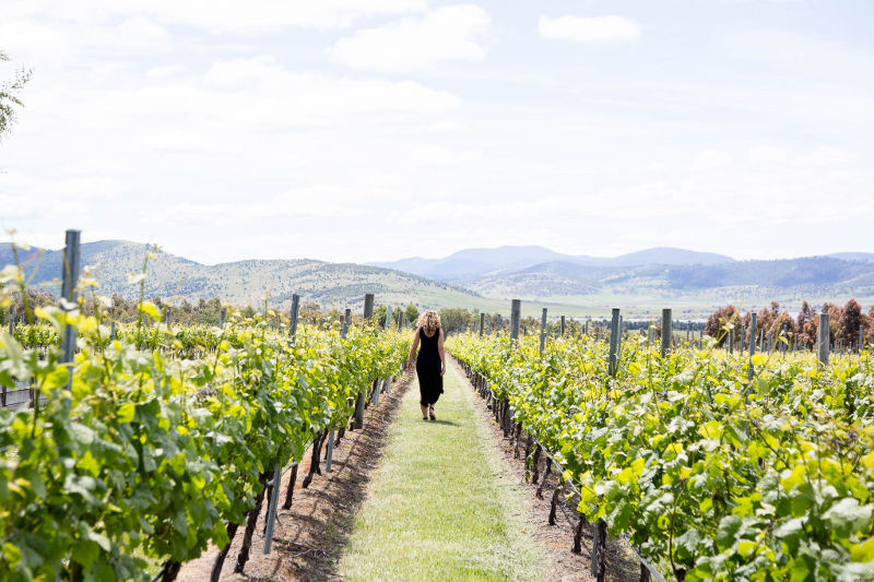 girl in vineyards coal river tasmania