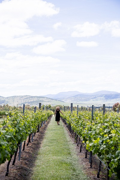 girl in vineyards in hobart