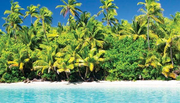 Cook Islands Flash Sale   Flight Centre