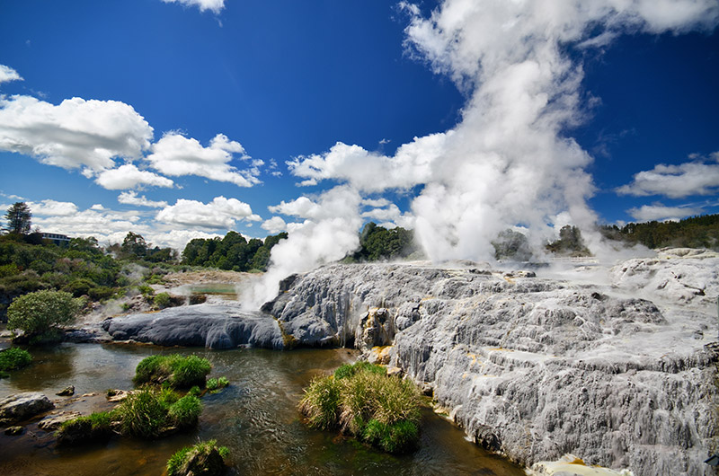 Steam coming out of geyser in Te Puia Rotorua