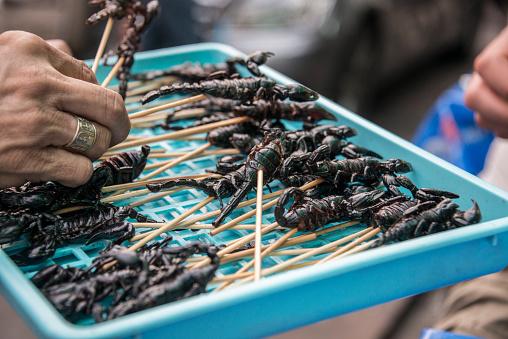 Fried Scorpions Siam Plaza Thailand