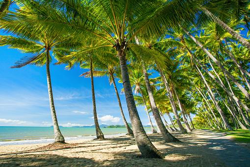 Trinity Beach Cairns Australia