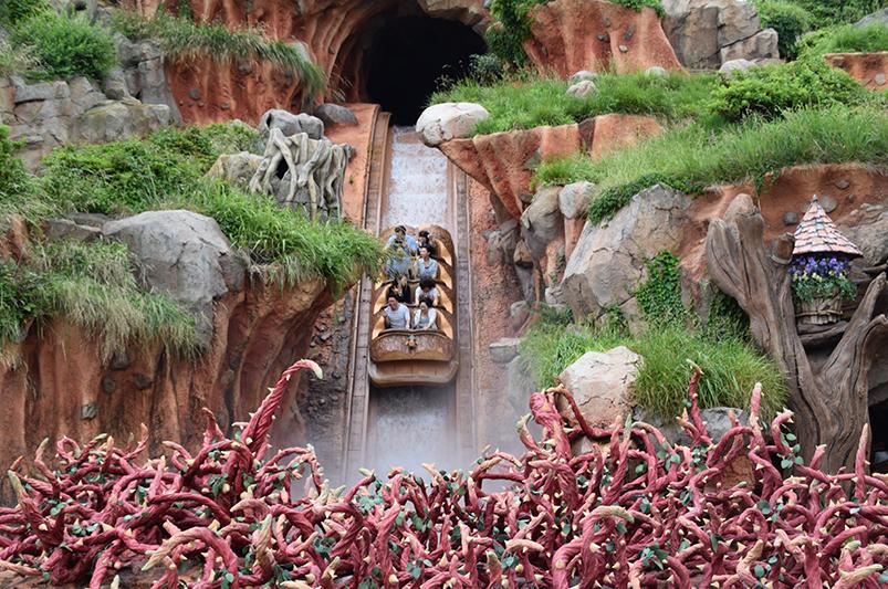 Ride at Tokyo Disneyland