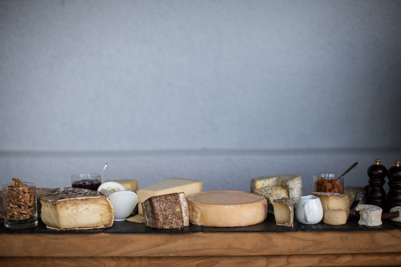 Cheeses lined up on a table.