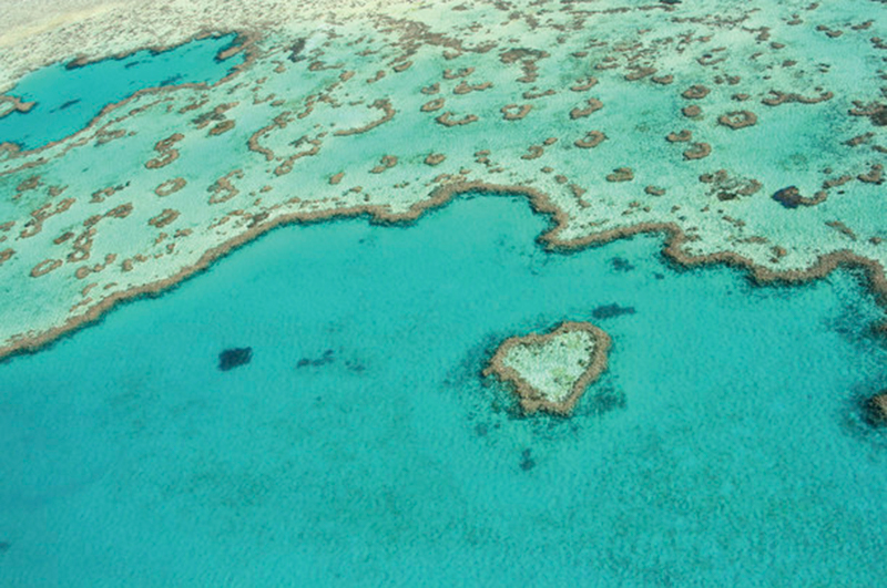 Heart Reef, Whitsundays, Great Barrier Reef, Queensland