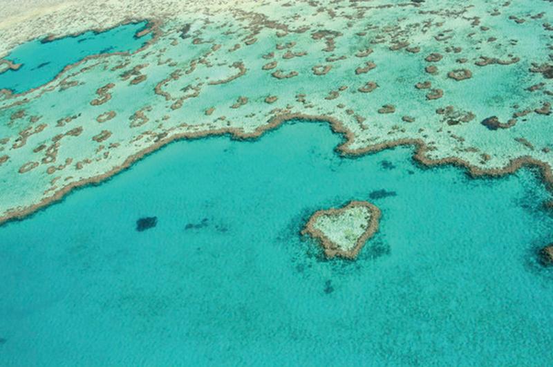 Heart Reef, Whitsundays, Great Barrier Reef, Queensland