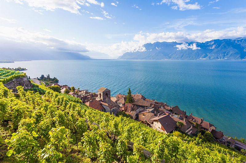 swizterland wine region overlooking water
