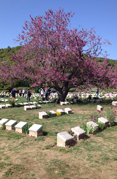 Walk through of Gallipoli memorial sites