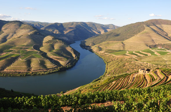 The stunning landscape along Portugal's Douro River.